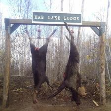 Northwestern Ontario Moose Hunting